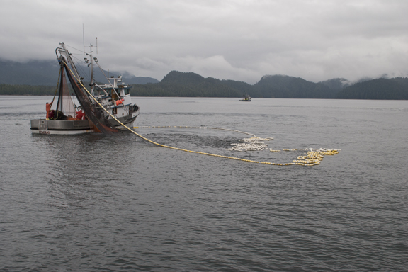 Seiner fishing off Ketchikan